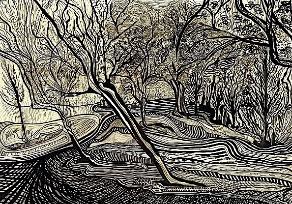 Kerry Zacharia's Landscape by Dimensions ( Ink on Paper)